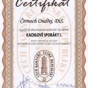 6 Cech - sporáky1 21.9.2012